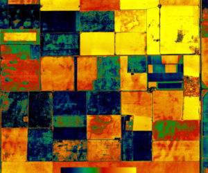 Multispectral Crop Health