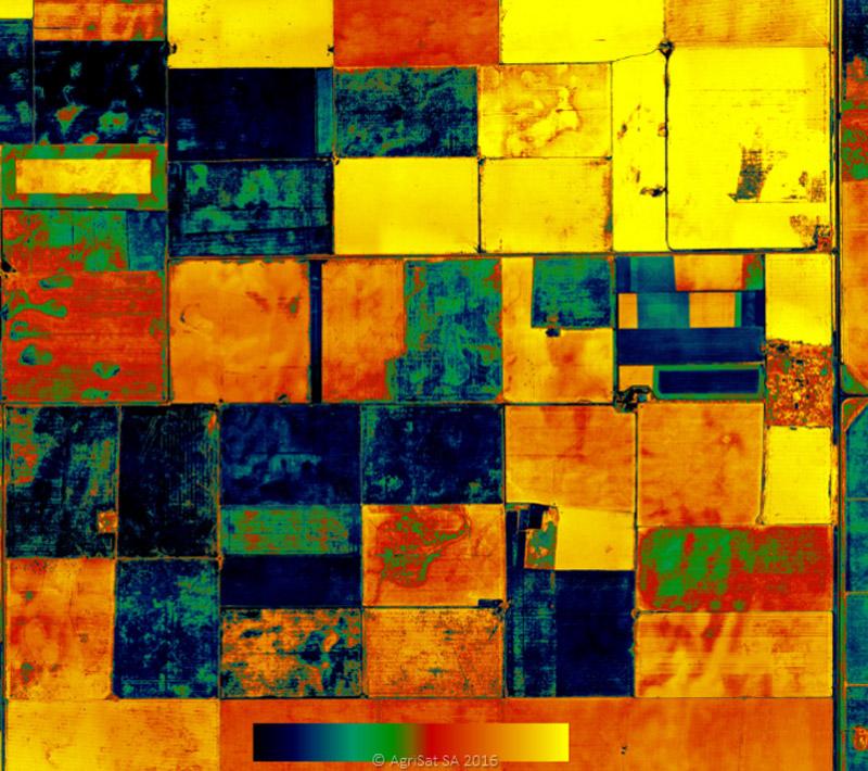 Multispectral Crop Health